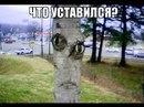 Личный фотоальбом Дениса Градова