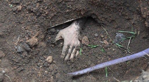 Началась эта история в конце мая 1861 года, когда в Ставропольском уезде случайные прохожие нашли упакованные в мешки два разрубленных человеческих тела Личности покойников полиция установила