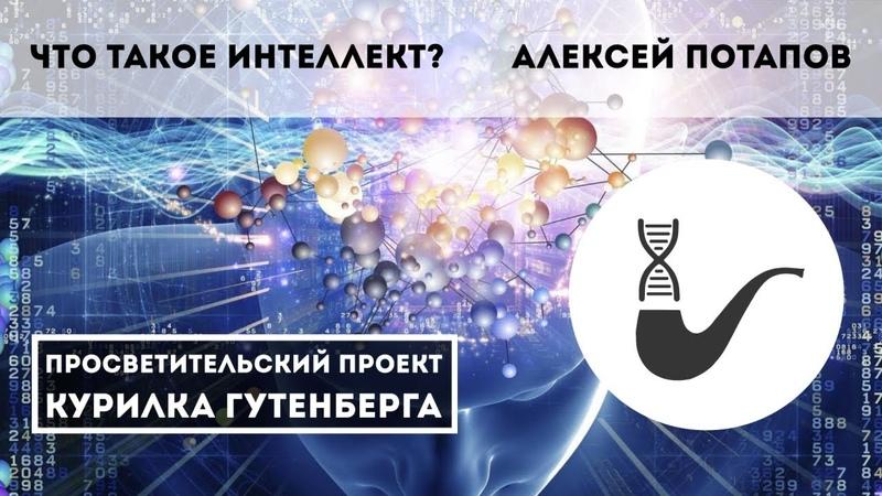 Что такое интеллект, или о вреде биологической метафоры для области ИИ – Алексей Потапов