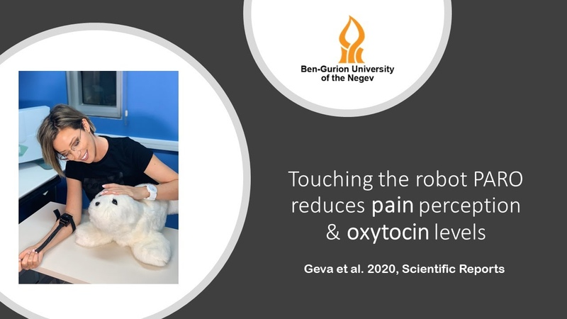 Interacting with the PARO robot reduces pain and oxytocin levels