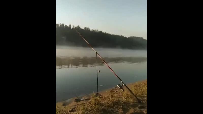 Всем хорошего дня кто на рыбалке 😇😉