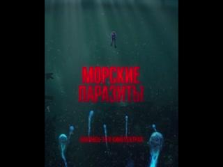 «Морские паразиты» – уже в кино