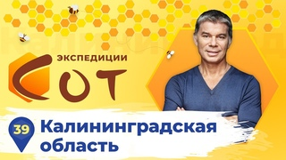 Вся правда об образовании в Калининградской области