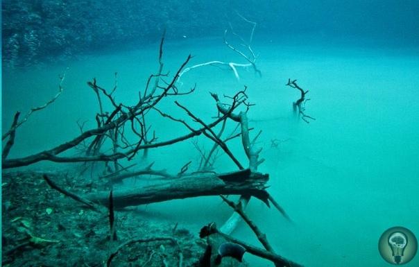 Ценот Анхелита  подводная река Юкатана