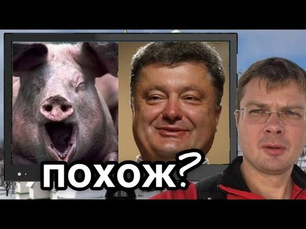 Пьяная свинья Порошенко захрюкал от удовольствия