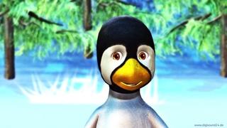 Geburtstagslied lustig, Pinguin, Happy Birthday to you, WhatsApp