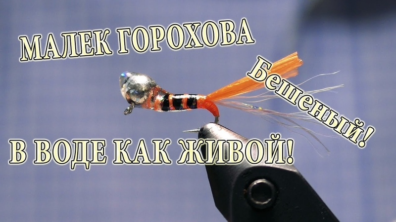 Малек Горохова для Зимы Шустрик Бешеный как живая рыба