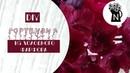 DIY Красная гортензия из холодного фарфора Мастер класс Red hydrangea from cold porcelain