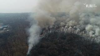 - Лесной пожар в районе Тавричанки