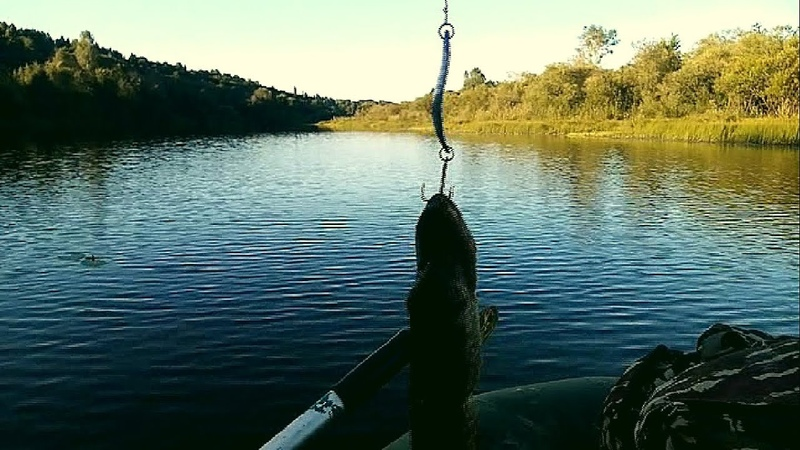 21 августа Рыбалка на озере у дома Белые лилии