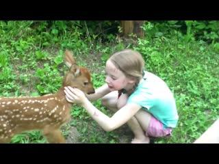 Бескорыстная дружба детей человека и животных.. ❤