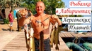 Ловля Щуки и Окуня в лабиринтах Херсонских плавней. Рыбалка 2020