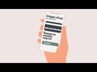 Собака сорвала конверсию в покупку. Почему срываются заказы: 1-я серия
