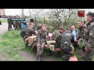 Голодная украинская армия, брошенная на произвол судьбы ()