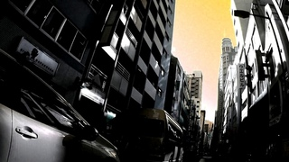 Oriental Love (Kaya Takada) - Water Lilly  /  睡蓮 ( Kyo-bashi , Higasi-Ginza  /  京橋、東銀座  :  Psychedelic Tokyo Cycling )