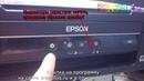 Сброс памперса Adjustmentt program Epson L362, L132, L222, L312, L366, L130, L220, L365