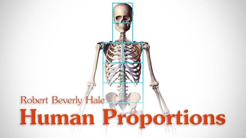 Human Figure Proportions Cranial Units Robert Beverly Hale