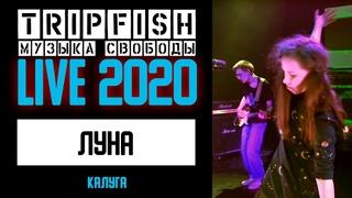 TripFish - LIVE - Луна