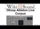 Обзор Ableton Live Corpus