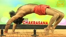 Chakrasana चक्रासन Swami Ramdev Acharyakulam Haridwar