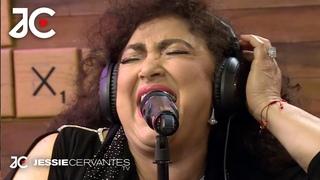 """Amanda Miguel - Increíble voz cantando """"El gato y yo"""" + """"El me mintió"""" + """"Así no te amará jamás"""""""