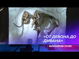 Новгородцы могут поближе познакомить с мамонтами на уникальной выставке