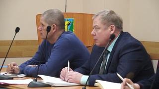 В Комсомольске-на-Амуре введён режим ЧС в связи со вспышкой вируса африканской чумы