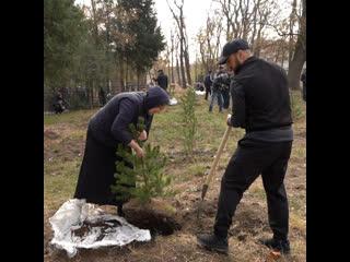 В столице Дагестана прошла акция «Сохраним лес», посвящённая памяти Абдулманапа Нурмагомедова