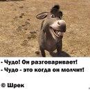 Личный фотоальбом Тоси Щемелёвы