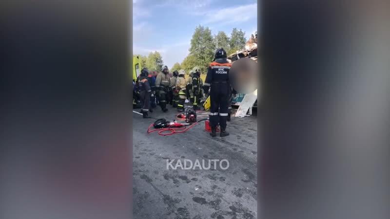 Видео с места ДТП с рейсовым автобусом в районе пос Круглово 27 09 20