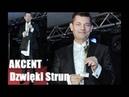 Akcent - Dzwięki Strun Wersja 2015