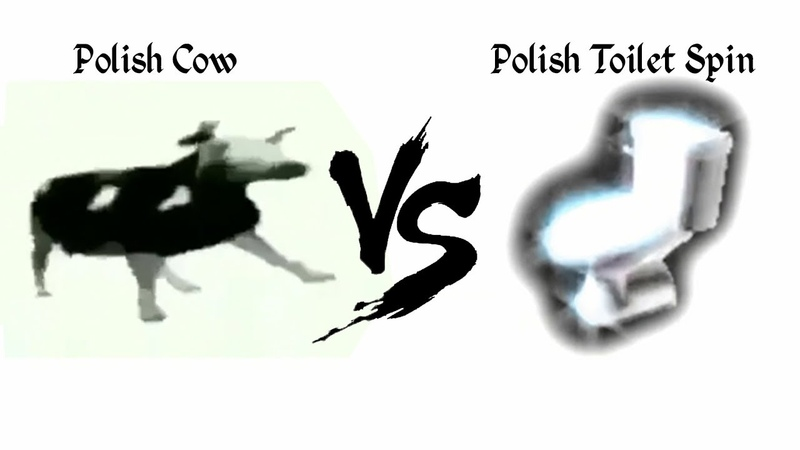 Polish cow vs Polish toilet spin in 360°
