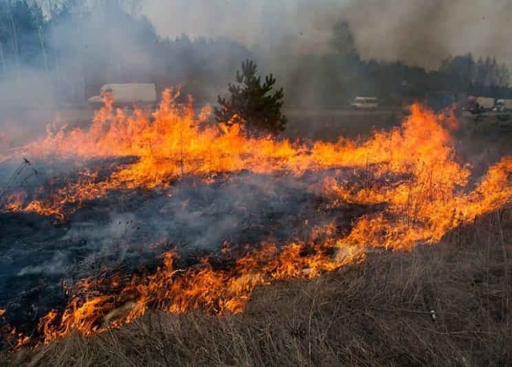 ГУ МЧС России по Саратовской области напоминает о том, что в регионе сохраняется высокая вероятность возникновения природных пожаров
