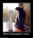 Фотоальбом Бориса Болеева