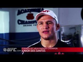 UFC 166: Интервью Джуниора Дос Сантоса