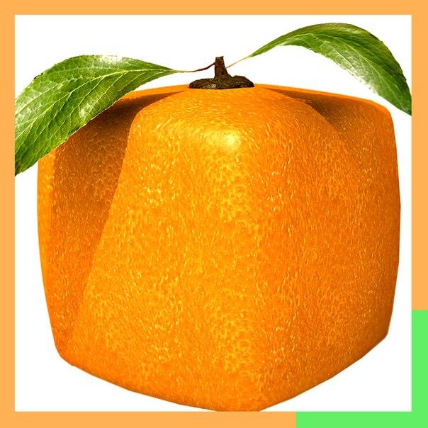 away.php?to=http%3A%2F%2Fkv-apelsin.com%2Fraspisanie.html