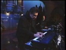 Elvis Costello 13 Steps Lead Down (live TV 1994)
