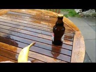 Как открыть пиво бананом (6 sec)