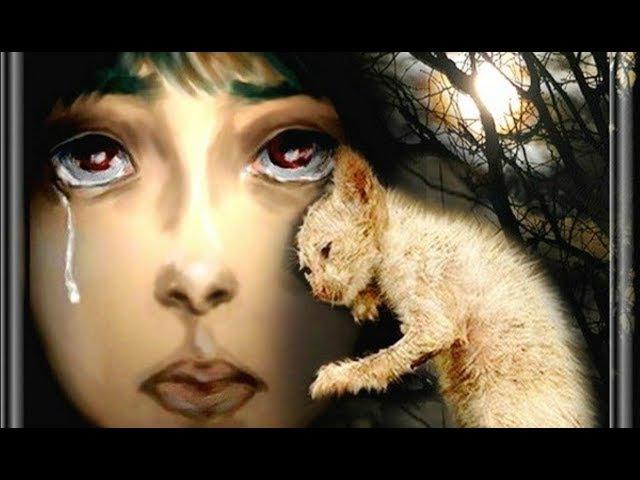 Виктория Оганисян Грустная песня про кота Автор Светлана Копылова Рисунки Наталии Кузьмиенко