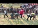 Собачьи бои Турнир в Китае 2015 бандог vs питбуль