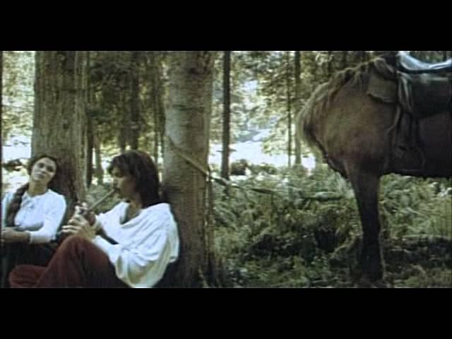 Камінна душа 1989)