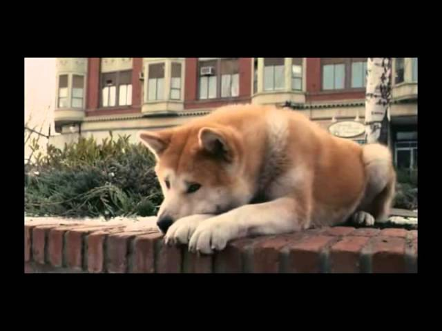 Hachiko A Dog's Story Music Video From Movie