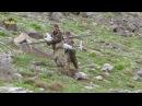 Видео турецкого беспилотника Байрактар, сбитого партизанами
