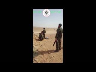Сирия, Хомс. «Тигры» полковника Сухейль аль-Хасана и российские военные советники