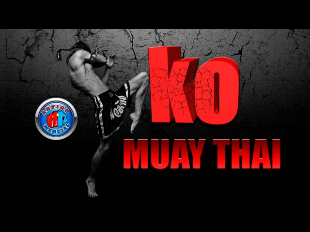 👊The Best of Muay Thai knockouts - tigerclub161.ru