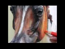 Pastel Painting Demonstration-Arabian Horse by Roberta Roby Baer PSA