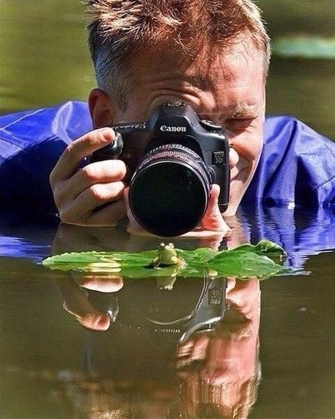 отсутствуют почему не ценят труд фотографа этом шаблоне