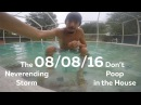 Don't Poop in the House, The Neverending Storm - 08/08/16 - Huntley Brothers
