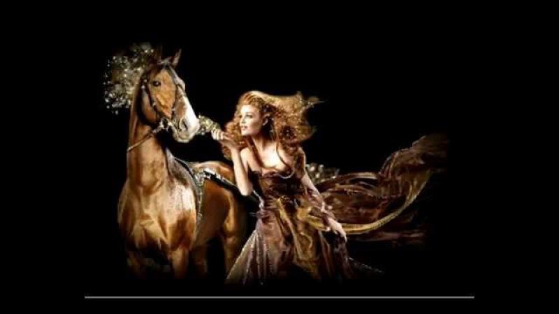 Барда Сага боевых коней Евгений Сусоров Saga warhorses Warhorses Saga