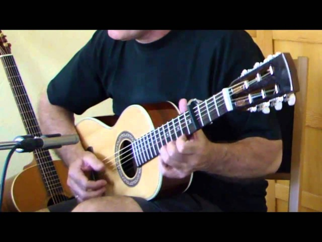 Flowers from Ayako (Franco Morone cover - played on an Ibanez AVN 3)